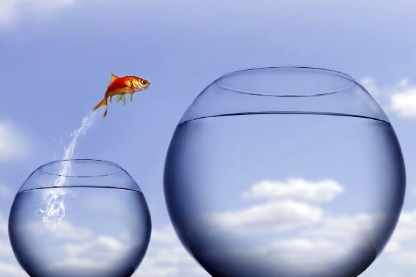Rechercher du travail pendant le déconfinement : insurmontable ou opportunité ?